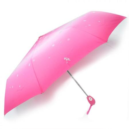 핑크 (1)